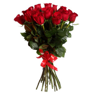 голландские розы