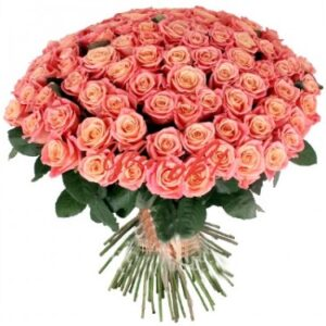 101 роза Мисс Пигги