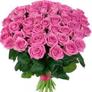Роза Аква 70 см 51шт