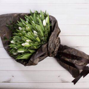 Стильный тюльпан