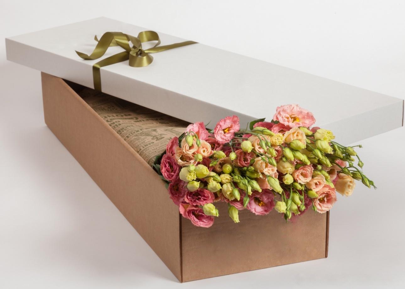 Коробка № 48