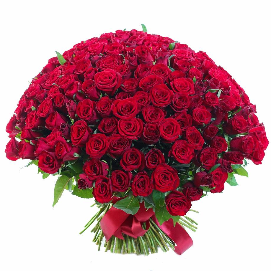 201 роза Гран При
