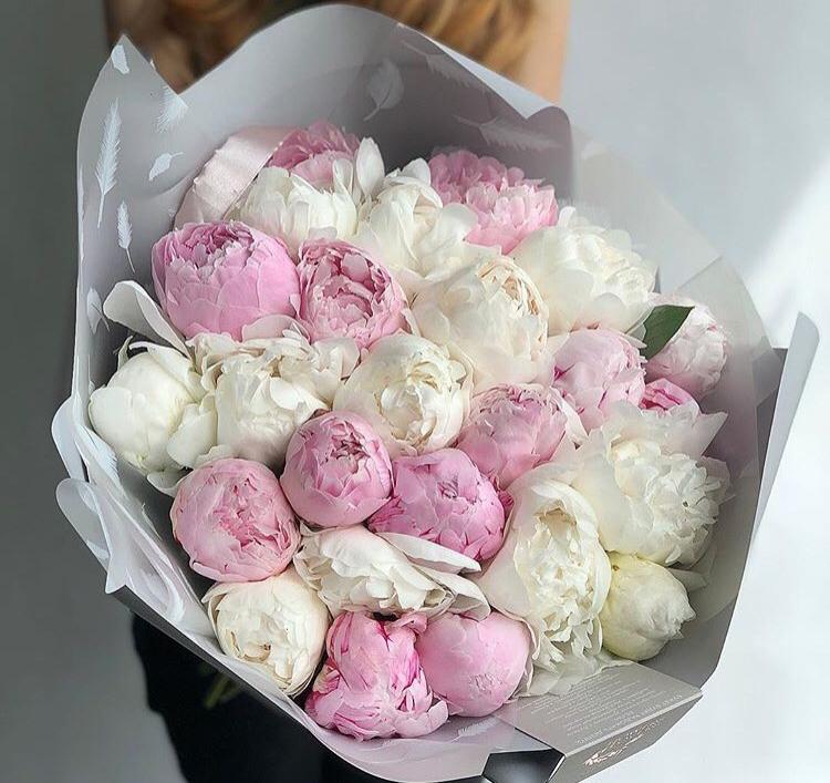 Цветы гвоздика, заказ букеты с днем рождения пионы